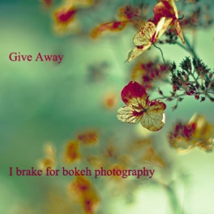 I brake for bokeh give away at etsy